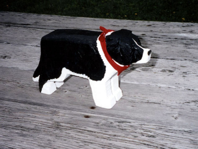 border-collie_jpg