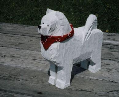 American Eskimo