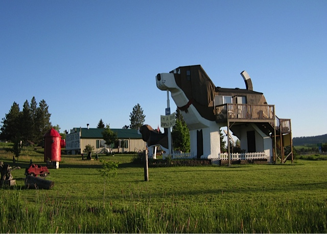 stay in the world's only dog-shaped hotel