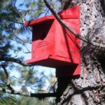 Roamer's Travels – Episode 7 – Bird Boxes, White Bird Hill, a Lake & some History